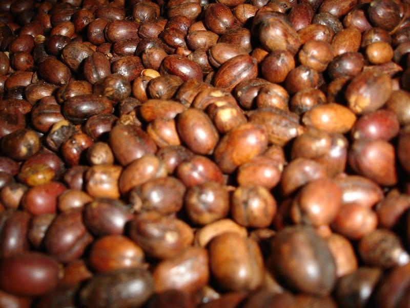 Dry Cherry Coffee